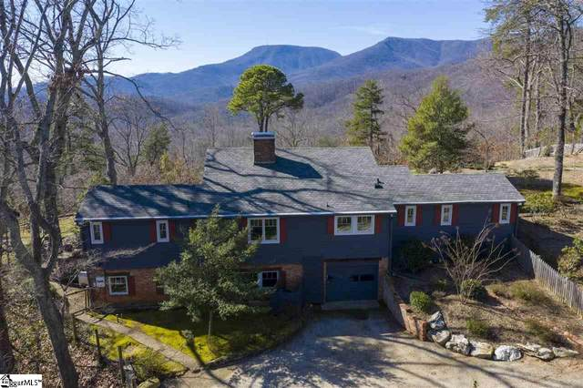 230 Overlook Circle, Tryon, NC 28782 (#1420508) :: J. Michael Manley Team