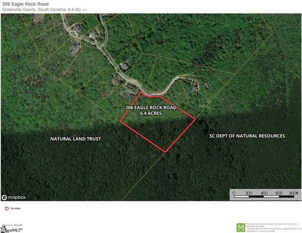 206 Eagle Rock Road, Landrum, SC 29356 (#1420641) :: Hamilton & Co. of Keller Williams Greenville Upstate