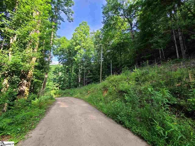 Lot 44 Laurel Mountain View Road Lane, Flat Rock, NC 28731 (#1421083) :: Mossy Oak Properties Land and Luxury