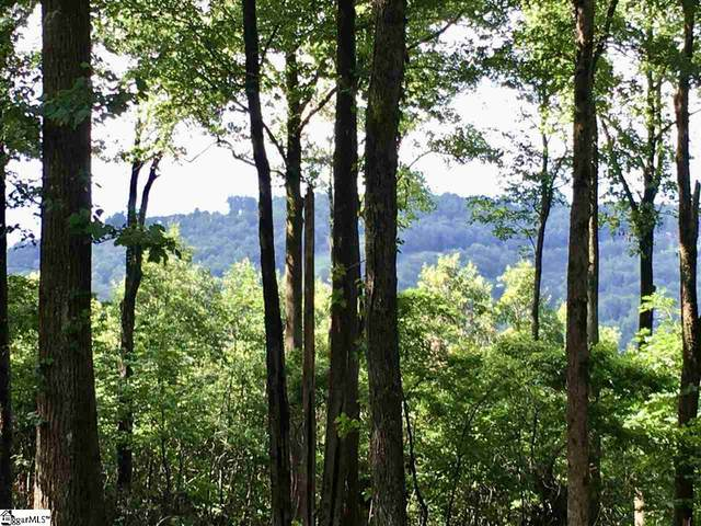 Wild Ginger Road, Landrum, SC 29356 (#1422424) :: Hamilton & Co. of Keller Williams Greenville Upstate