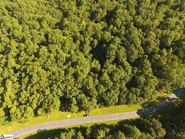237 Serenity Drive, Pickens, SC 29671 (#1425714) :: J. Michael Manley Team