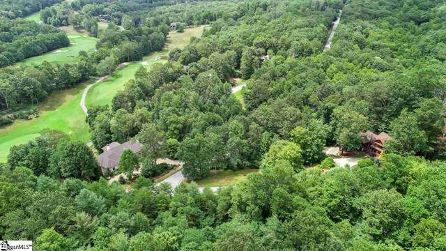 125 Catnip Trail, Landrum, SC 29356 (MLS #1426894) :: Prime Realty