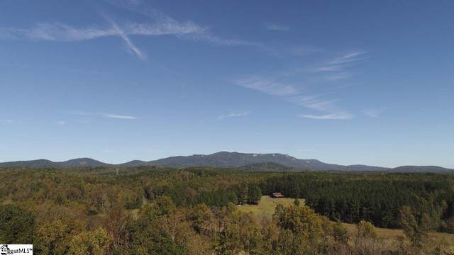 208 Wedge Way, Travelers Rest, SC 29690 (#1427210) :: DeYoung & Company