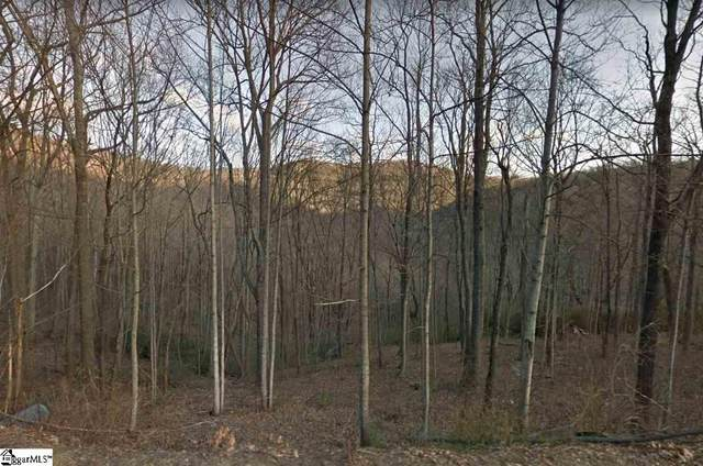 Outcrop Trail, Landrum, SC 29356 (#1431501) :: Expert Real Estate Team