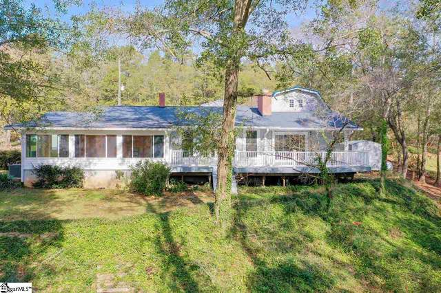 138 Portman Drive, Townville, SC 29689 (#1432491) :: Green Arc Properties