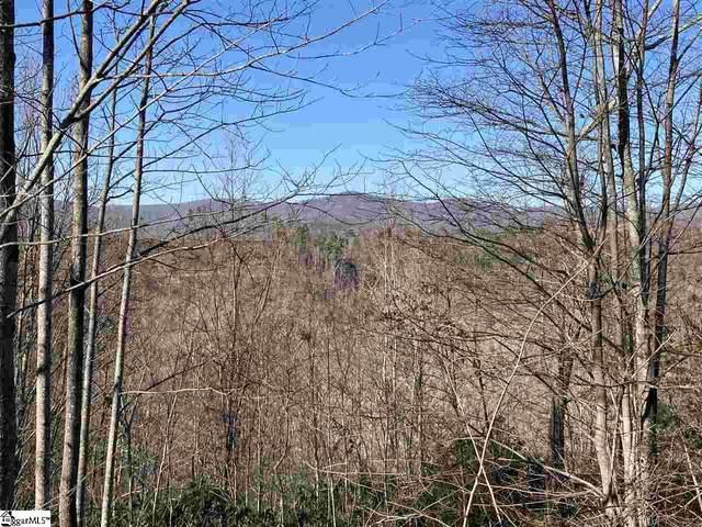 110 Dusky Wing Trail, Marietta, SC 29661 (#1435437) :: Hamilton & Co. of Keller Williams Greenville Upstate
