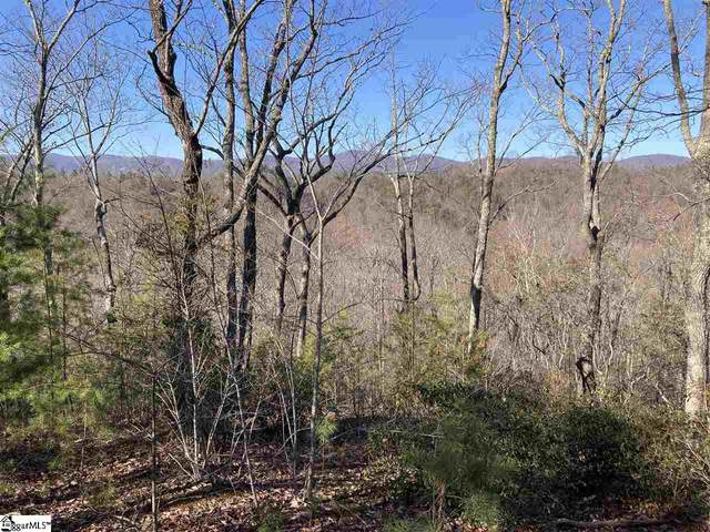 100 Dusky Wing Trail, Marietta, SC 29661 (#1435439) :: Hamilton & Co. of Keller Williams Greenville Upstate