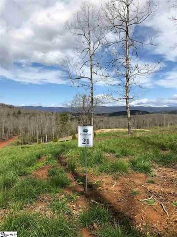 109 Meadow View Drive, Marietta, SC 29661 (MLS #1437990) :: Prime Realty