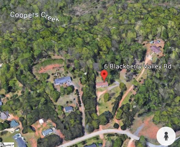 00 Blackberry Valley Road, Greenville, SC 29617 (#1438669) :: DeYoung & Company