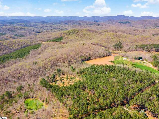 24 Big Jake Pass, Travelers Rest, SC 29690 (#1441994) :: Parker Group