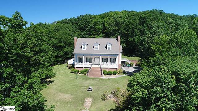 1524 Highway 11, Landrum, SC 29356 (#1442246) :: The Toates Team