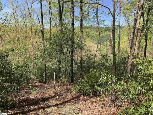 16 Cedar Waxwing Way, Marietta, SC 29661 (#1442266) :: J. Michael Manley Team