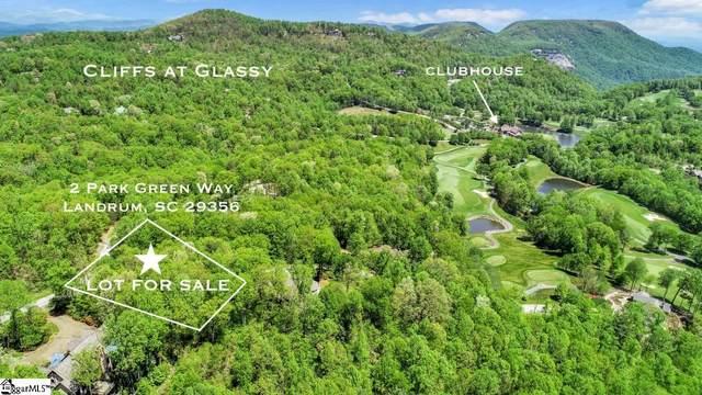 2 Park Green Way, Landrum, SC 29356 (#1443650) :: The Haro Group of Keller Williams