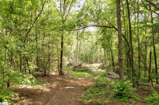 215 Doberman Trail, Easley, SC 29640 (#1444812) :: The Haro Group of Keller Williams