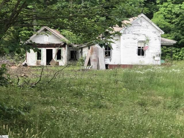 810 Ravan Drive, Landrum, SC 29356 (#1444925) :: The Haro Group of Keller Williams