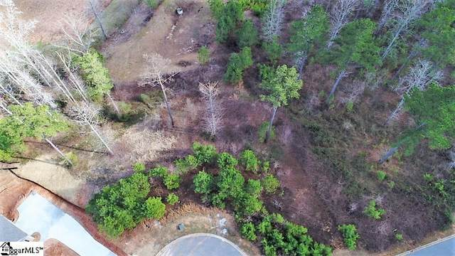 22 Tee Box Lane, Travelers Rest, SC 29690 (#1447826) :: Realty ONE Group Freedom