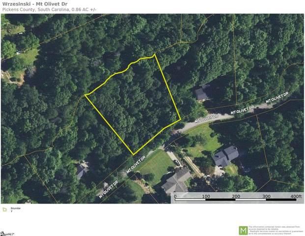 127 Mt Olivet Drive, Pickens, SC 29682 (#1448111) :: J. Michael Manley Team