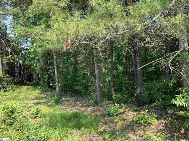 4 Beacon Ridge Circle, Salem, SC 29676 (#1450561) :: Parker Group