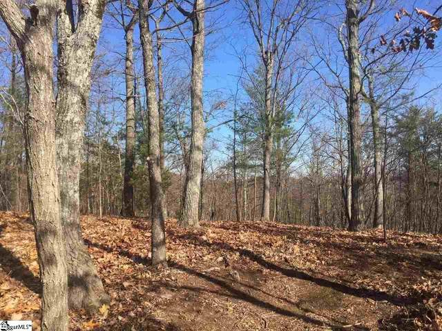 109 Eagle Rock Road, Landrum, SC 29356 (#1450868) :: Realty ONE Group Freedom
