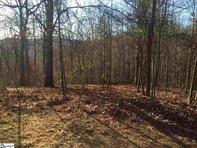 3 Cliffs Overlook Drive, Landrum, SC 29356 (#1450869) :: Realty ONE Group Freedom