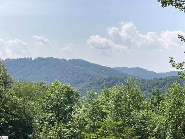 1227 Mountain Summit Road, Travelers Rest, SC 29690 (#1451434) :: J. Michael Manley Team