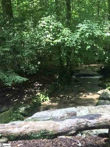 1209 Panther Park Trail, Travelers Rest, SC 29690 (#1452877) :: J. Michael Manley Team