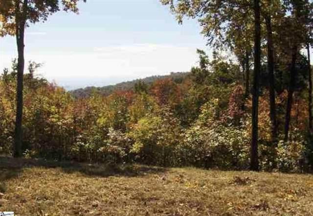 Wild Ginger Road, Landrum, SC 29356 (#1454050) :: Hamilton & Co. of Keller Williams Greenville Upstate