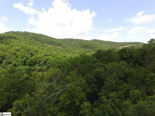 170 Black Knight Trail, Marietta, SC 29661 (#1454230) :: The Haro Group of Keller Williams
