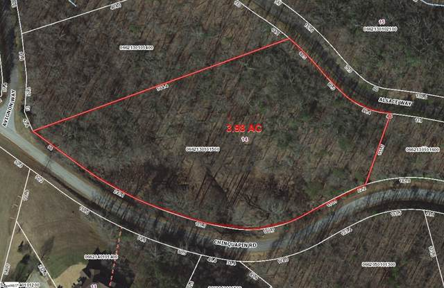 14 Alsace Way, Travelers Rest, SC 29690 (MLS #1455184) :: Prime Realty