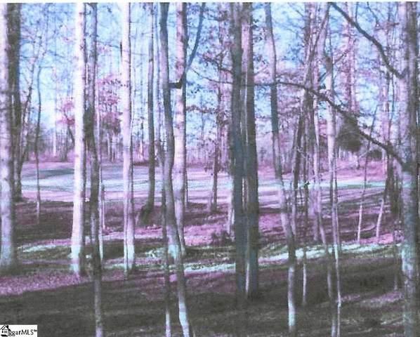 4 Laurel Valley Way, Travelers Rest, SC 29690 (MLS #1456613) :: Prime Realty