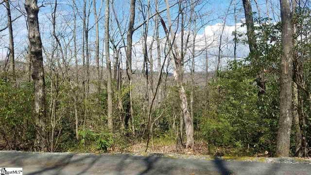 8 Chestnut Bluff, Cleveland, SC 29635 (#1457038) :: J. Michael Manley Team