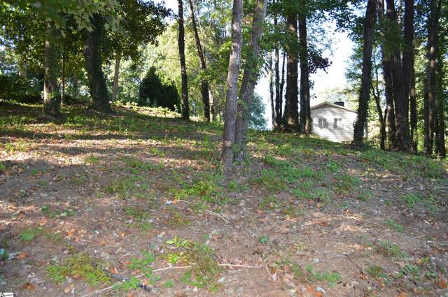 00 Hillside Court, Tryon, NC 28782 (#1457276) :: Williams and Associates | eXp Realty