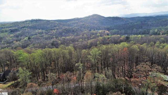 317 Laurel Valley Way, Travelers Rest, SC 29690 (#1457324) :: Williams and Associates | eXp Realty