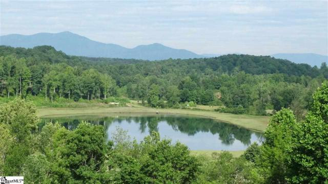 0 Catawba, Tryon, NC 28782 (#1276641) :: Coldwell Banker Caine