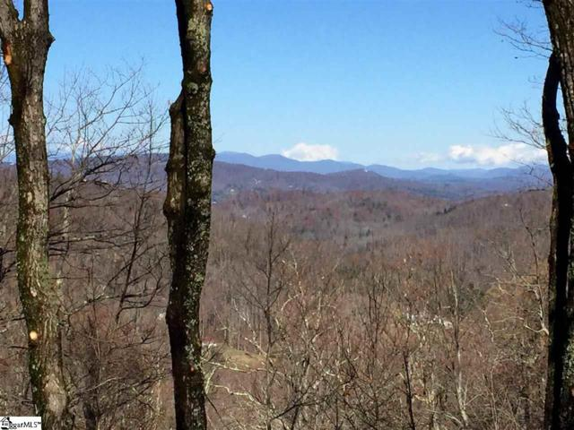 Lot 18 Panther Mountain Road, Zirconia, NC 28790 (#1308992) :: Parker Group