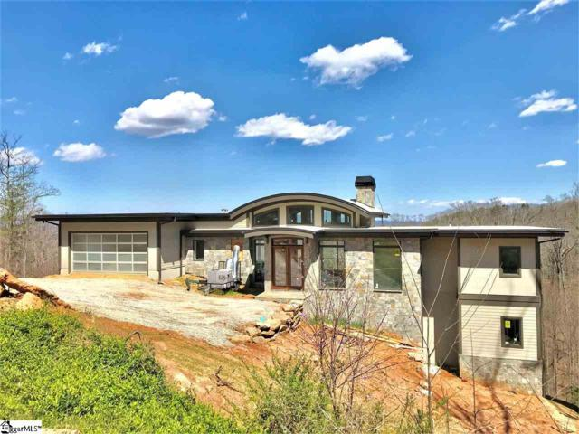 15 Windfaire Pass Court, Greenville, SC 29609 (#1369349) :: Connie Rice and Partners