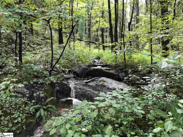 00 Gap Creek Road, Marietta, SC 29661 (#1373659) :: Connie Rice and Partners