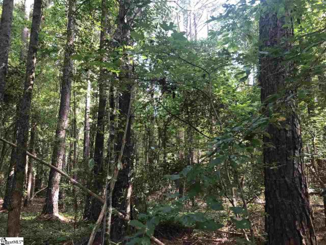 00 Legion Lake Road, Honea Path, SC 29654 (#1374617) :: Hamilton & Co. of Keller Williams Greenville Upstate