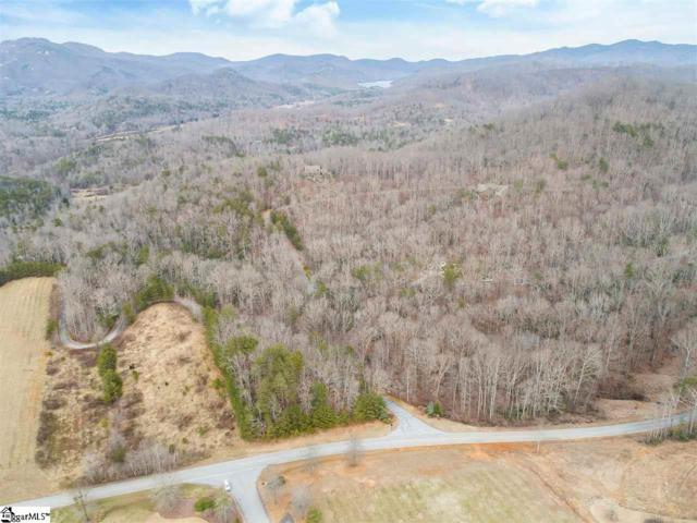 227 Luberon Lane, Travelers Rest, SC 29690 (#1385160) :: Connie Rice and Partners