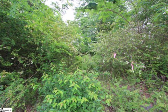 Hawthorne Avenue, Woodruff, SC 29388 (#1391696) :: J. Michael Manley Team