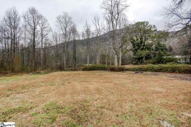 10 Old Gap Creek Road, Marietta, SC 29661 (#1411496) :: Connie Rice and Partners