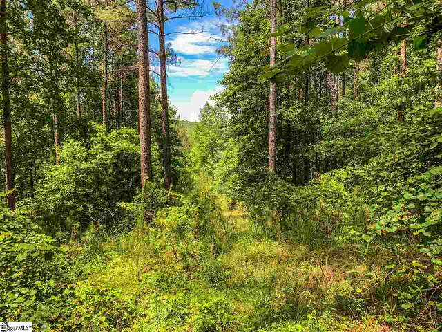 #2-57 Spring Cove Way, Six Mile, SC 29682 (#1420733) :: Mossy Oak Properties Land and Luxury