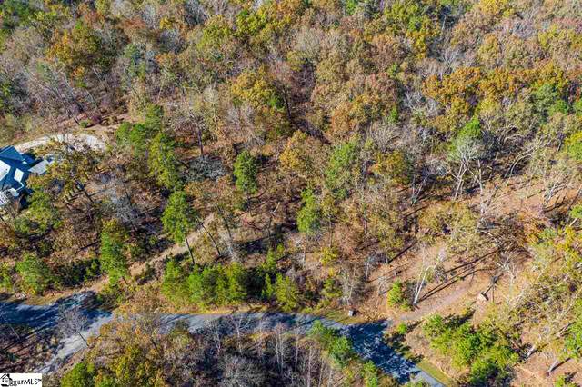 143 S Falls Road, Sunset, SC 29685 (MLS #1431428) :: Resource Realty Group