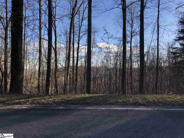 0 Witch Hazel Trail, Landrum, SC 29356 (#1432511) :: DeYoung & Company