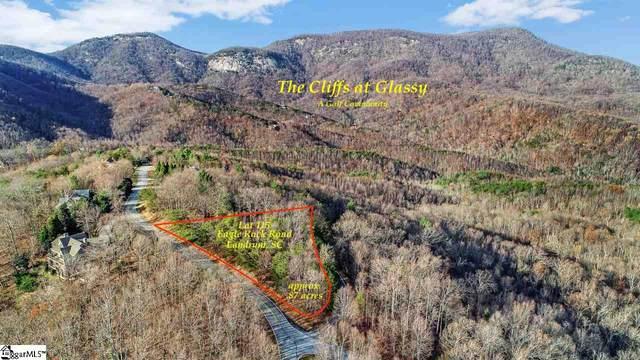 97 Eagle Rock Road, Landrum, SC 29356 (#1433365) :: J. Michael Manley Team