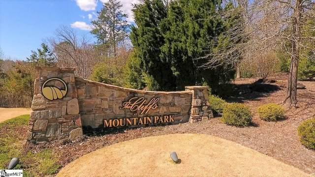 365 Blue Bonnet Trail, Marietta, SC 29661 (#1445062) :: Hamilton & Co. of Keller Williams Greenville Upstate