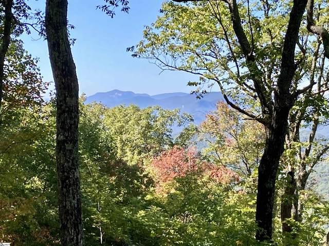 108 Fall Breeze Trail, Travelers Rest, SC 29690 (#1456631) :: The Robby Brady Team