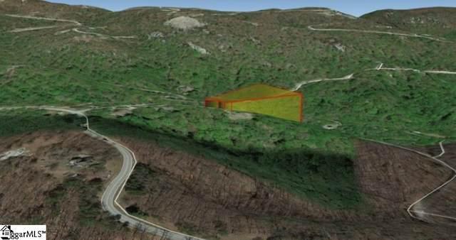 23 Northslope View Drive, Landrum, SC 29356 (MLS #1457226) :: Prime Realty