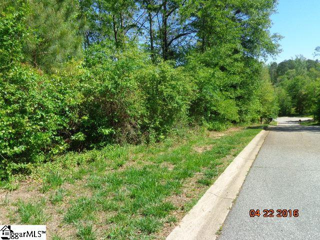 100 Dursely Drive, Anderson, SC 29625 (#1320554) :: The Robby Brady Team