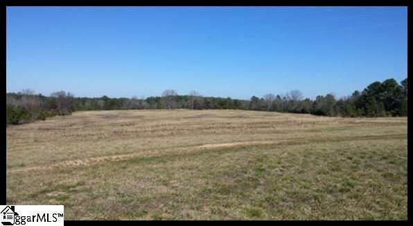 Highway 773 Highway, Prosperity, SC 29127 (#1357523) :: Connie Rice and Partners